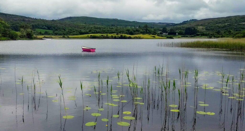 Pic: Tadhg Ó Duinnín